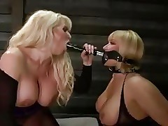 Homo Milfs feature give away..