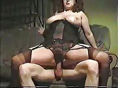tyro cuckold