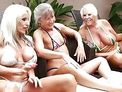 3 Grandmas Obtain Dastardly Dig..
